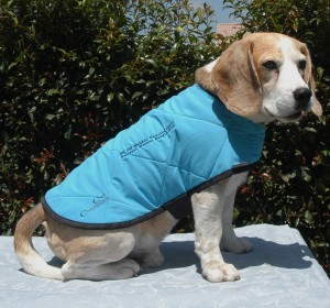 Dog Cool Coat size 43cm