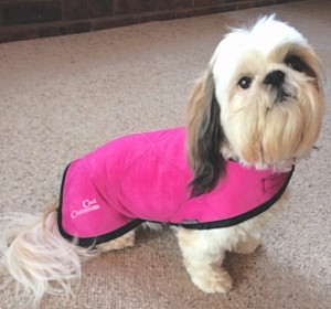 Pet Cool Coat size 38cm