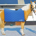 Cooling Horse Sheet