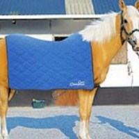 Arctic Horse Cooling Blanket
