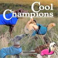 K9 CoolChampions Cool Coats